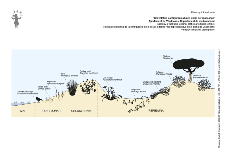 Cartell Dunes Viladecans