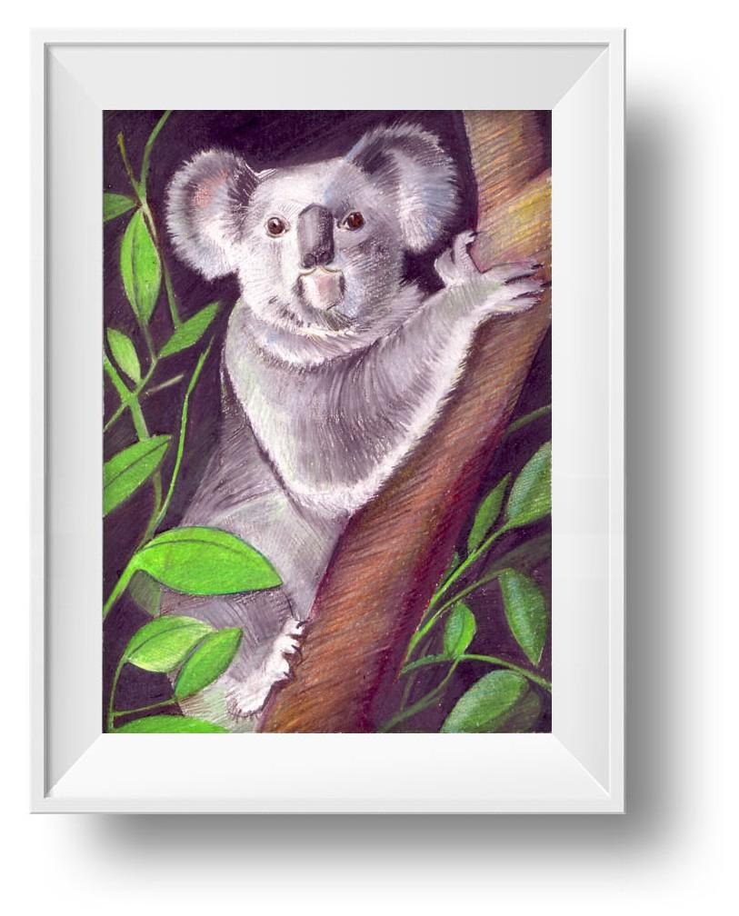 Ilustracion Koala